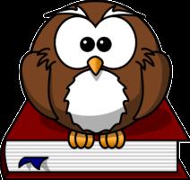 Braune Eule sitzt auf rotem Buch vom Bücher Preisvergleich.