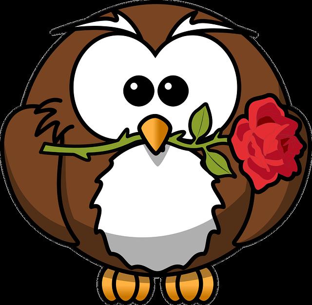 Bücher günstig kaufen - Braune Eule mit roter Rose im Schnabel